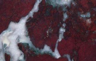 Red Fiorentino